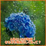 6月・梅雨のしくみとは?梅雨入り梅雨明けの時期は?体調不良に注意!